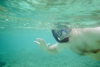 Snorkeling the Tobago Cays